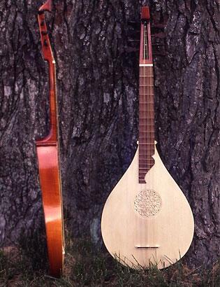 http://www.cincinnatiearlymusic.com/cittern/cittern_4course_red.jpg