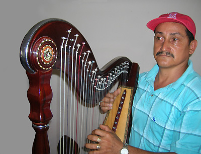 harp jarocho player